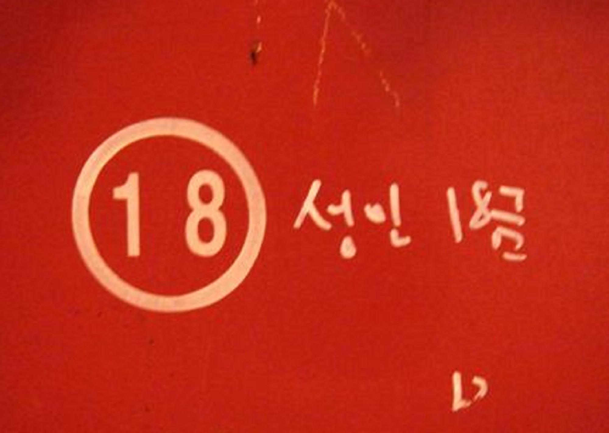 18+1금 이야기